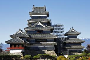 11月 国宝松本城の写真素材 [FYI04586917]
