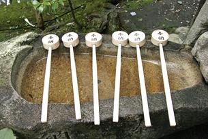9月 手水鉢と柄杓 -嵯峨野の野々宮神社 -の写真素材 [FYI04586929]