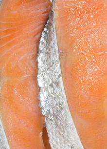 鮭の切り身の写真素材 [FYI04587099]