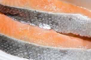 鮭の切り身の写真素材 [FYI04587100]