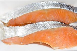 鮭の切り身の写真素材 [FYI04587101]