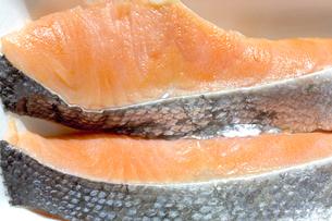 鮭の切り身の写真素材 [FYI04587102]