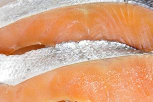 鮭の切り身の写真素材 [FYI04587103]