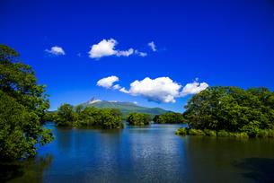 大沼国定公園 大沼遊覧船船上より大沼に点在する島と北海道駒ヶ岳の風景の写真素材 [FYI04587198]