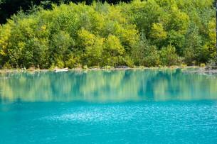緑の木々を写す青い池の湖面の写真素材 [FYI04587514]