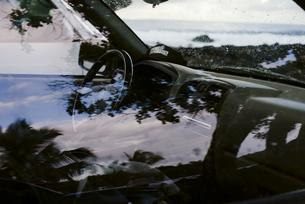 車の車窓に映るヤシの木の写真素材 [FYI04587561]