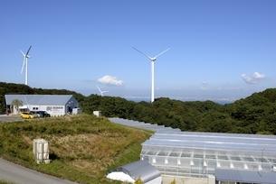 淡路,青空の風力発電とビニルハウスの写真素材 [FYI04587841]