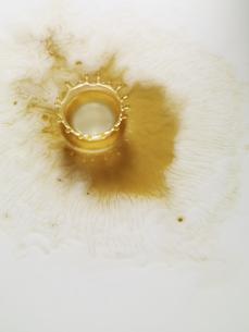 コーヒーの表面にミルククラウンの写真素材 [FYI04587916]