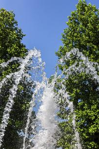 新緑を背景にした噴水の写真素材 [FYI04587926]