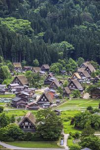 白川郷合掌造り集落の写真素材 [FYI04587977]