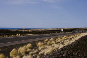 ハワイ島の大地と道の写真素材 [FYI04588044]