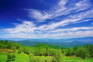 レンゲツツジと草原と木立と白馬連峰などの山並みとすじ雲の写真素材 [FYI04588209]