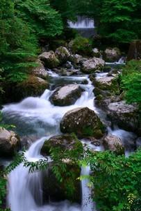 夏の渓谷のスローシャッター写真の写真素材 [FYI04588235]
