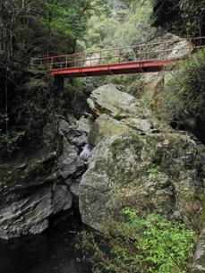 渓谷を渡る赤い橋の写真素材 [FYI04588359]