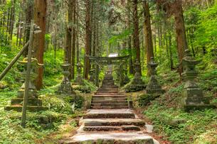 上色見熊野座神社 熊本県高森町の写真素材 [FYI04588406]