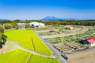 鹿児島市都市農業センターと桜島の写真素材 [FYI04588772]