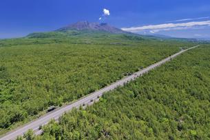 溶岩道路と桜島の写真素材 [FYI04588821]