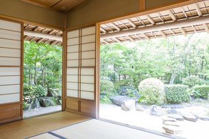 和室から見える日本庭園の写真素材 [FYI04588959]