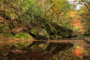 秋の岳切渓谷 大分県宇佐市の写真素材 [FYI04588983]