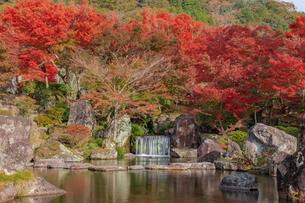 秋の渓石園 耶馬渓ダム記念公園 大分県中津市の写真素材 [FYI04588992]