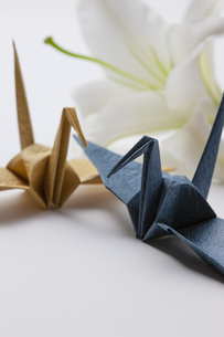 折り鶴とユリの花の写真素材 [FYI04589040]