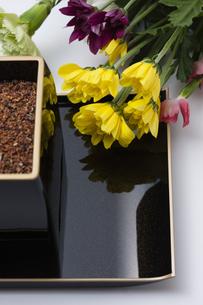 御焼香と菊の写真素材 [FYI04589064]
