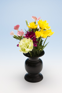 仏花の写真素材 [FYI04589082]