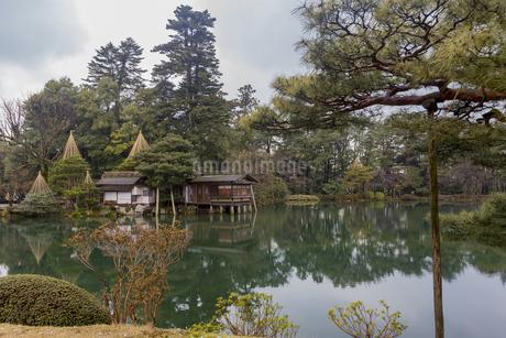 石川県金沢市 雨上がりの兼六園の写真素材 [FYI04589398]