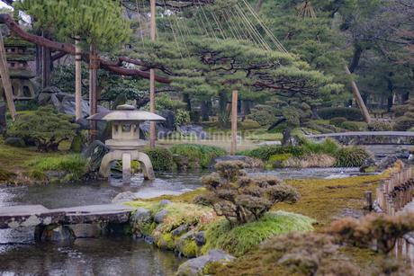 石川県金沢市 雨上がりの兼六園の写真素材 [FYI04589403]