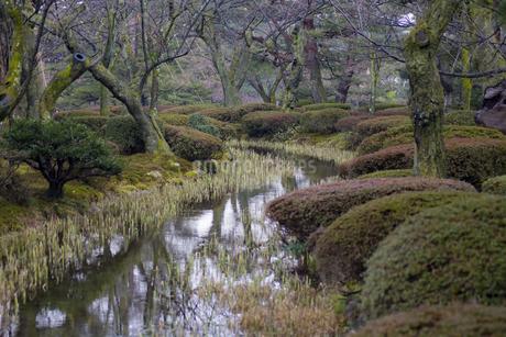 石川県金沢市 雨上がりの兼六園の写真素材 [FYI04589406]