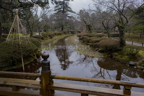 石川県金沢市 雨上がりの兼六園の写真素材 [FYI04589411]