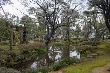石川県金沢市 雨上がりの兼六園の写真素材 [FYI04589413]