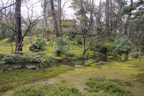 石川県金沢市 雨上がりの兼六園の写真素材 [FYI04589418]