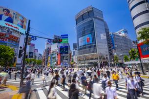 渋谷のスクランブル交差点の写真素材 [FYI04589616]