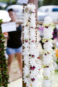 朝市でレイの花販売の写真素材 [FYI04589785]