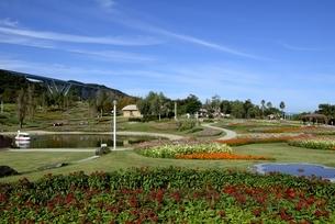 淡路島,国営明石海峡公園,大地の虹の写真素材 [FYI04589860]