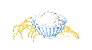 白ごはんと稲穂の水彩画のイラスト素材 [FYI04590039]