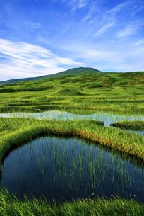 月山弥陀ヶ原湿原の写真素材 [FYI04590431]