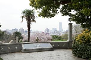 横浜外国人墓地の見晴台の写真素材 [FYI04590988]