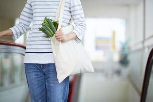 エコバッグに入れた食材を運んでいる女性の写真素材 [FYI04591025]