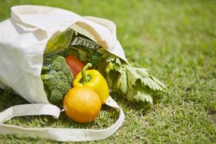 芝生の上のエコバッグと野菜の写真素材 [FYI04591028]