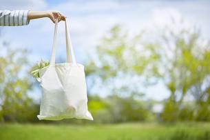 屋外で食材の入ったエコバッグを持った女性の写真素材 [FYI04591029]