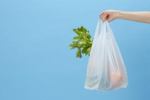 ブルーバックで食材が入ったレジ袋を持った手の写真素材 [FYI04591030]