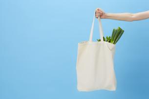 ブルーバックで食材が入ったエコバッグを持った手の写真素材 [FYI04591031]