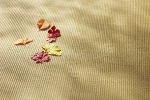 畳の上の落ち葉の写真素材 [FYI04591117]