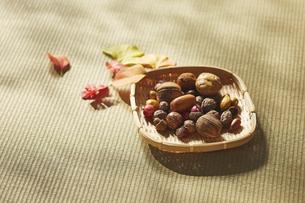 畳の上のザルに入った木の実と落ち葉の写真素材 [FYI04591120]