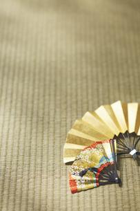 畳の上の大小の扇子の写真素材 [FYI04591130]