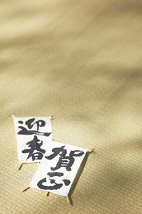 畳の上の凧の写真素材 [FYI04591134]
