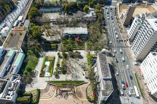 文京シビックセンター展望室から礫川公園(れきせんこうえん)を見下ろすの写真素材 [FYI04591483]
