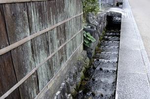 鹿野,城下町鹿野,400年流れる水路の写真素材 [FYI04591672]
